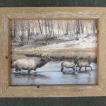 26 Elk River box