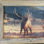 55 Elk at Dawn Box