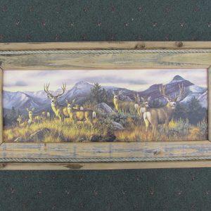 64 Mule Deer print