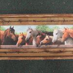 71 Horses at Rail print