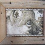 78 Wolf Pups box