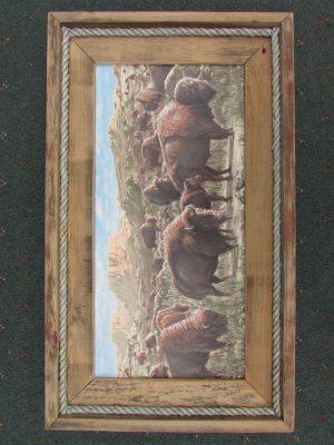 40 Buffalo print