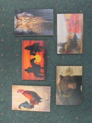Cedar Art Post Cards b