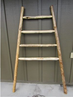 Kiva Rack