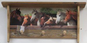 Rustic 3 peg Horses at Rail